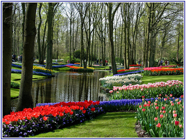 Marvel at the most beautiful spring garden in the world in Keukenhof