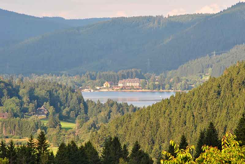 Travel through the Black Forest, a region that has vineyards, river valleys, sunny peaks, wide panoramic views, calm forests, revitalising spas,