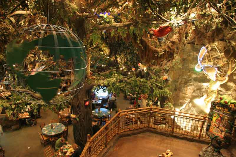 Lunch and shop at the Rainforest Café bringing together the sights and sounds of the jungle with a collection of moving  life-like animatronics of Gorillas, Elephants, Jaguars and crocodiles