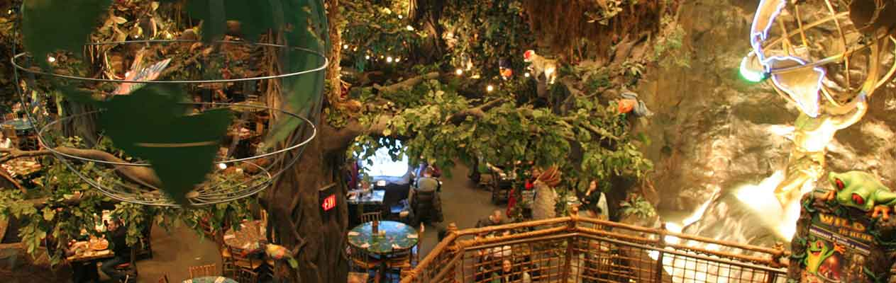 Rainforest-Cafe-v2