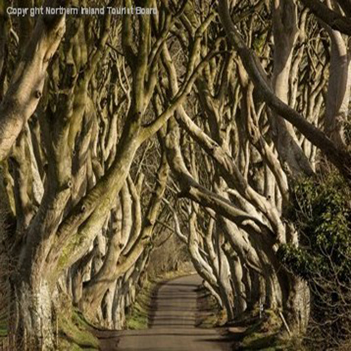 Dublin and Game of Thrones – 7 Nights