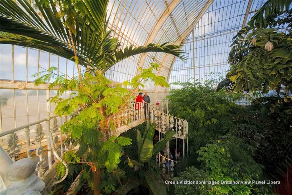 Explore the world's most famous botanic garden at Kew Gardens
