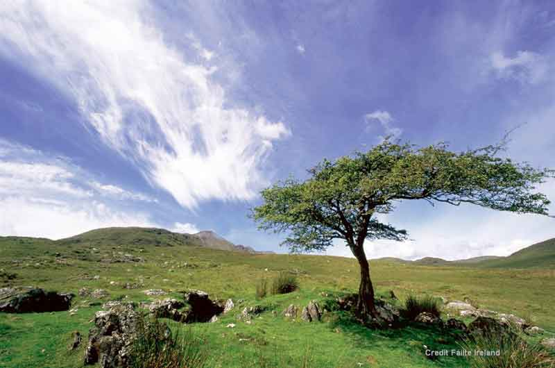 Connemara National Park - regarded as the real emerald of Ireland