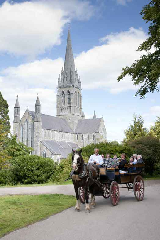 Cross the stunning Killarney National Park