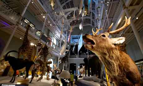 Learn about Scottish industrial and natural history  at the National Museum of Scotland