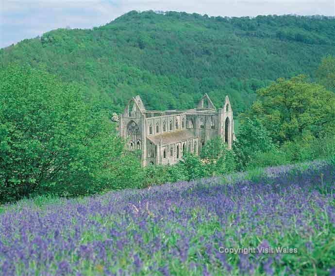 See the Cistercian Abbey of Tintern, one of the greatest monastic ruins of Wales.
