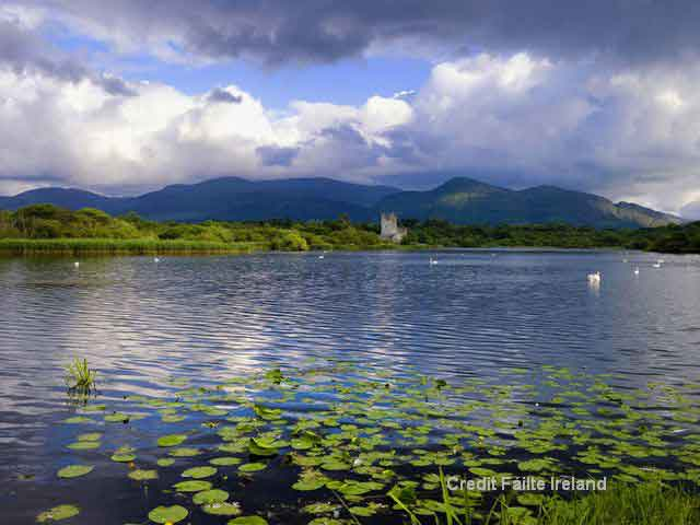 Discover the beauty of Killarney National Park