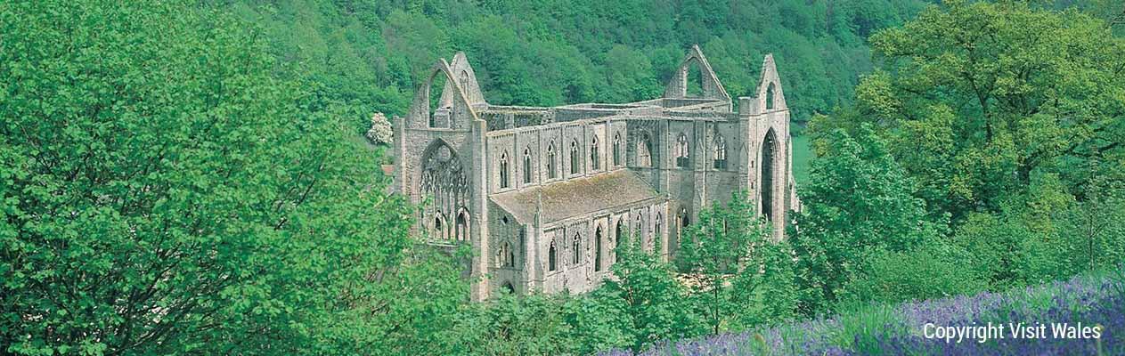 tmt_0018_5 Tintern Abbey S36-843-MT-A5W Banner 2 Copyright   Visit Wales 2CC